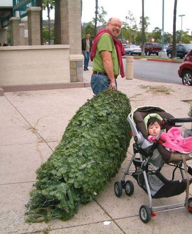 クリスマスツリーの買い方