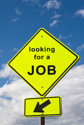 I am looking for a job !!!