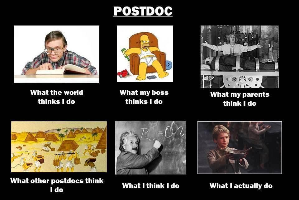 postdoc-reality1
