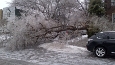 Ice Storm Attacked Toronto