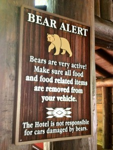 Bear-Warning1-225x300